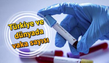 Türkiye'de Günlük Koronavirüs Tablosu – 16 Mayıs 2020